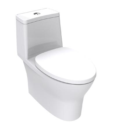 Flexio One Piece Toilet Tf 2530 Wasser Werkz Pa
